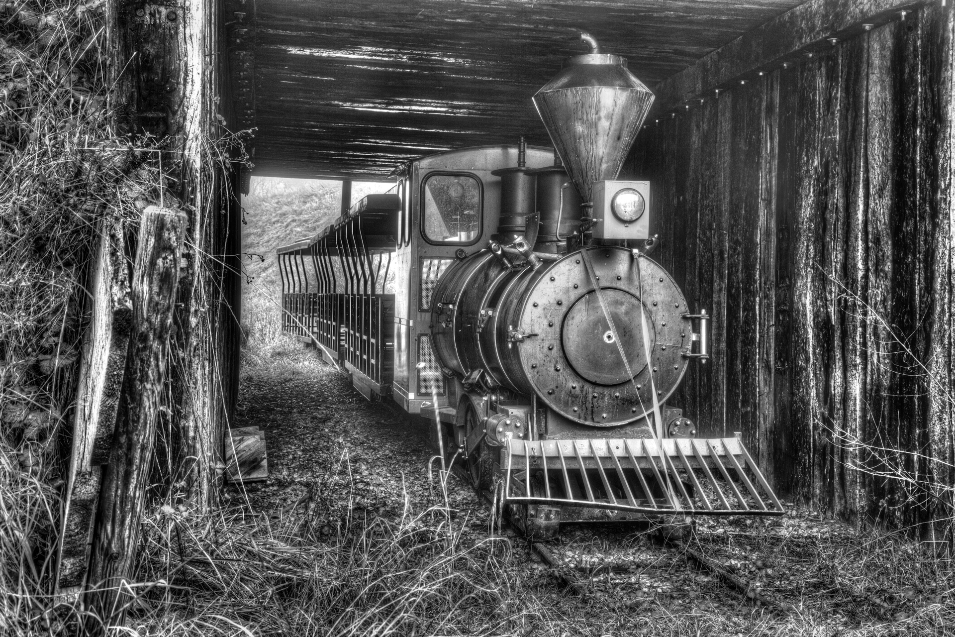 Urbex - Wayne City - Wayne Train