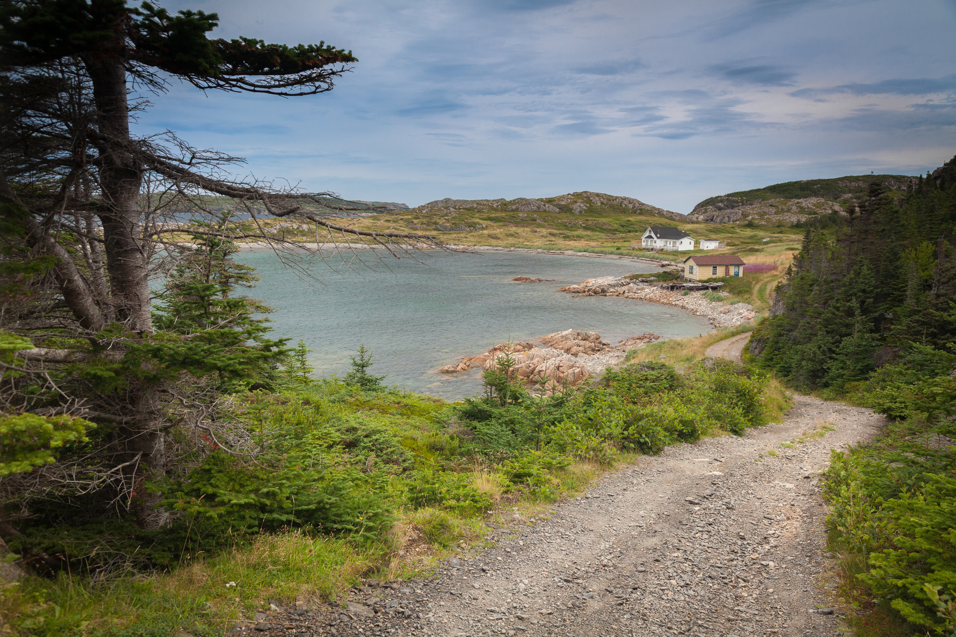 Landscapes - Newfoundland - My Way Home